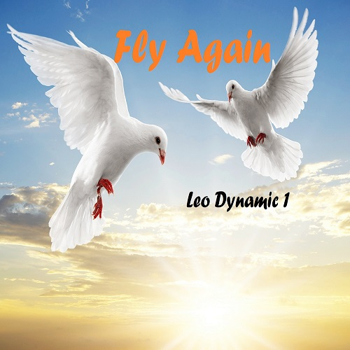 Fly Again Cover 500(1)